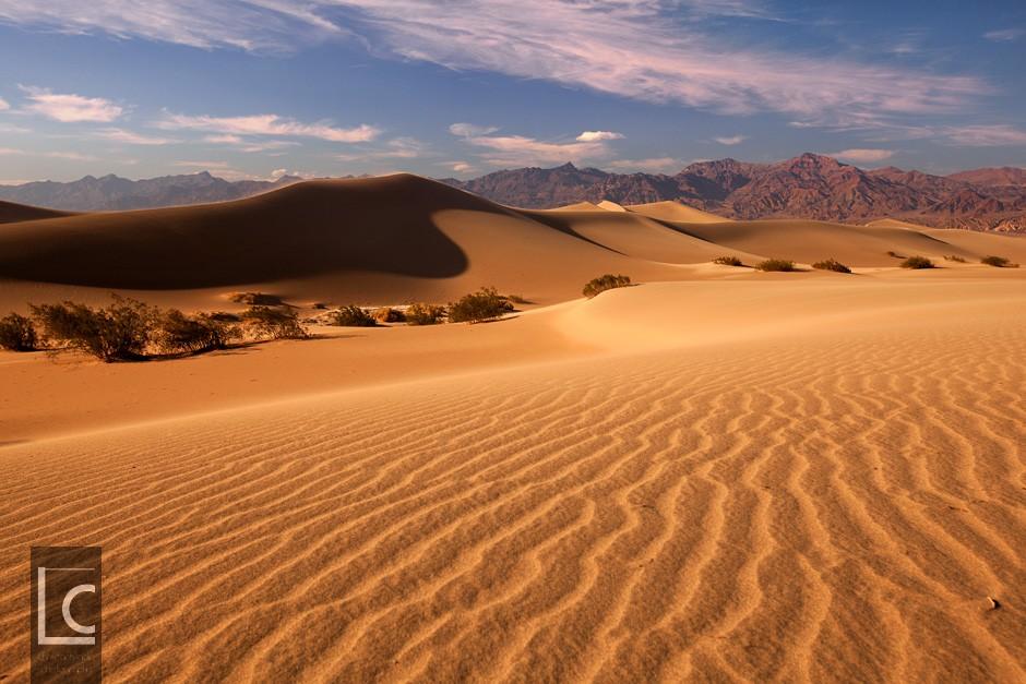 2013_06_11_Mesquite_Sand_Dunes_1_1682 Kopie