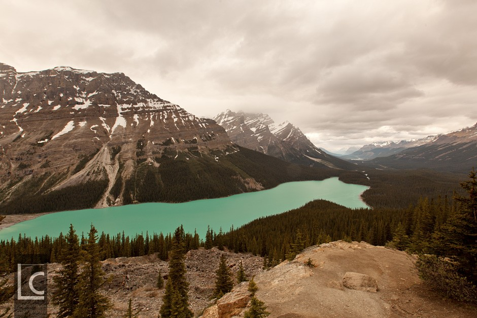 2013_06_24_5403_Peyto_Lake_2 Kopie