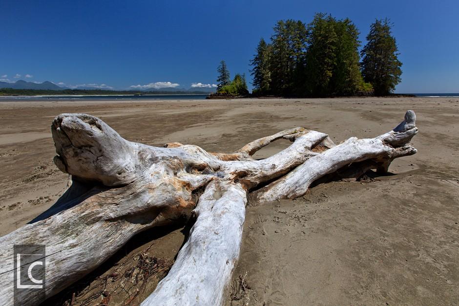 2013_07_03_6913_Vancouver_Island_Beach Kopie